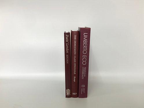 カラー洋書 ボルドー 3冊セット(M250)