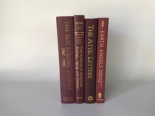 カラー洋書 ボルドー 4冊セット(M84)