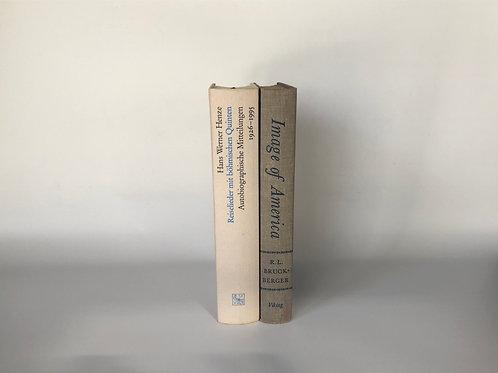カラー洋書 ホワイト・グレー 2冊セット(M108)