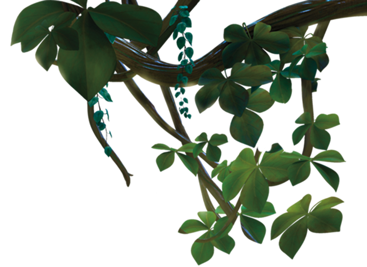 fgLayer-topRight-vines_2x.png