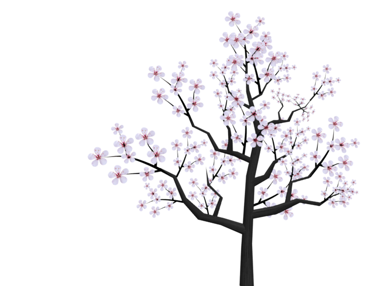george-washington-cherry-tree-clipart.pn