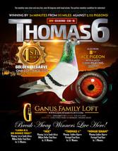 THOMAS 6 Full Page Ad