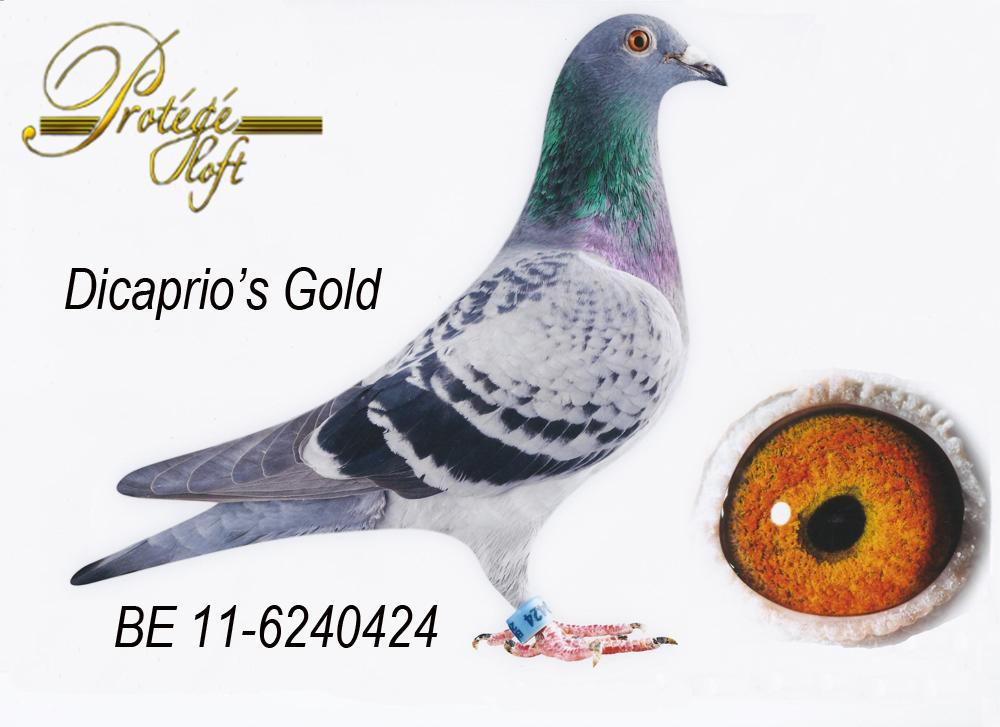 DICAPRIO'S GOLD