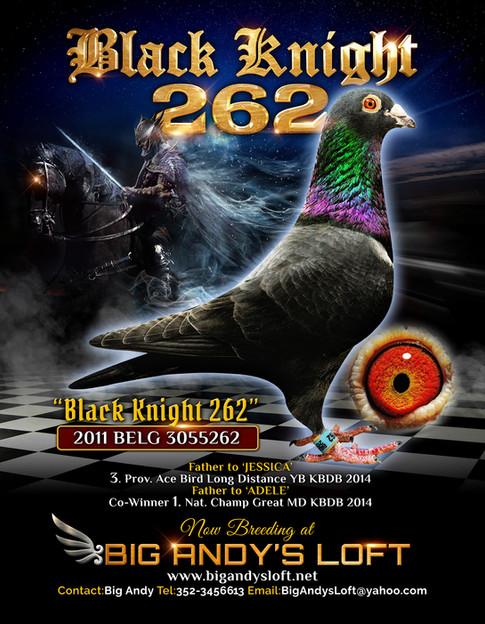 BLKknight_262_AD_email.jpg