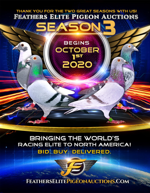 FE_Season3_AD_e.jpg