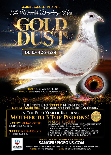 GOLD DUST- ad for Marcel Sangers of Holland