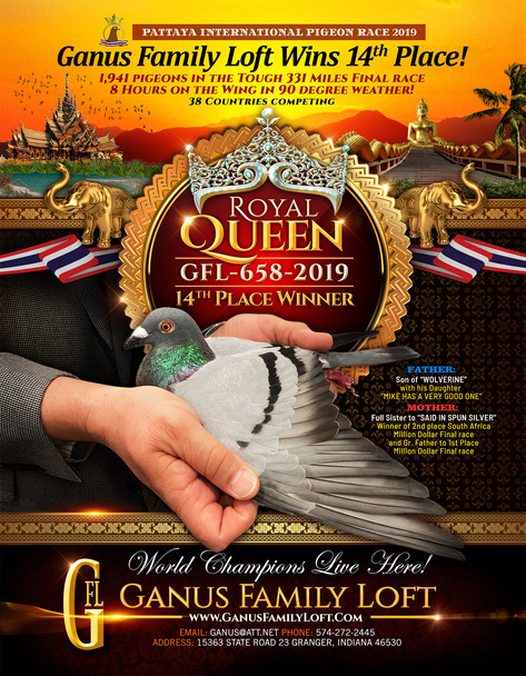 RoyalQueen_Pattaya_GFL_Ad2020