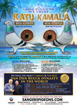 KATHU_KAMALA ad for Marcel Sangers