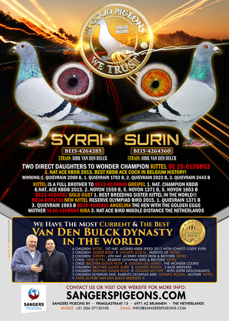 SYRAH & SURIN ad for Marcel Sangers