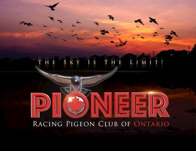 PIONEER_3d Logo Designby Pigeonation.jpg