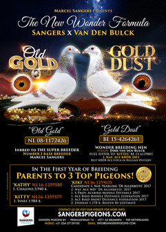 GOLD COUPLE - ad for Marcel Sangers of Holland