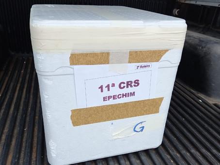 Erechim recebe mais uma remessa de vacinas contra a Covid-19