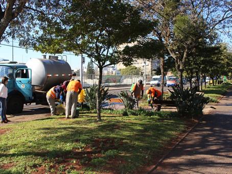 Secretaria de Meio Ambiente realiza revitalização nas avenidas e praças