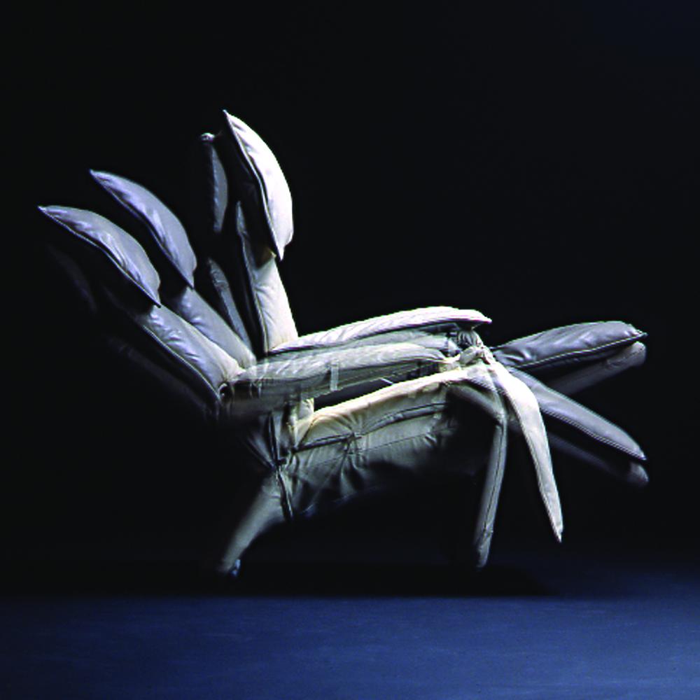 Pony reclinando