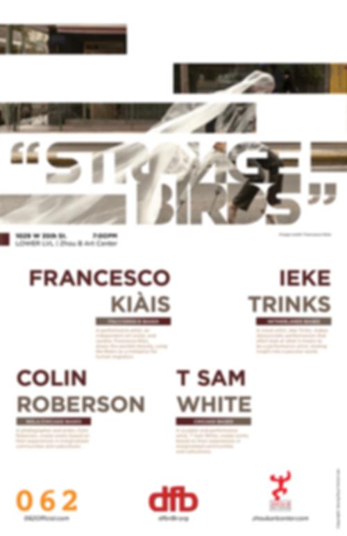 Strange Birds, 062chicago, 062gallery, performance gallery, Chicago art, Chicago galler, chicago performance