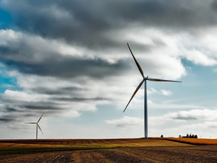 TWELVE CANADIAN FIRMS NAMED TO 2019 GLOBAL CLEANTECH 100 LIST