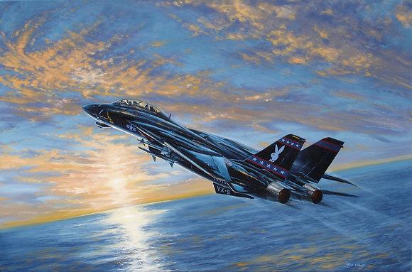 Vandy 1 F-14D Litho
