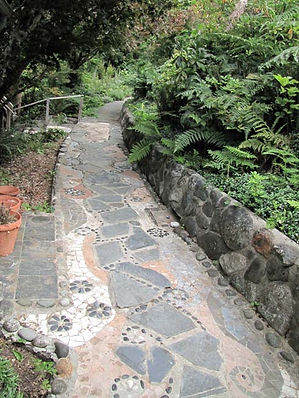 eaglenest-mosaic-path.jpg