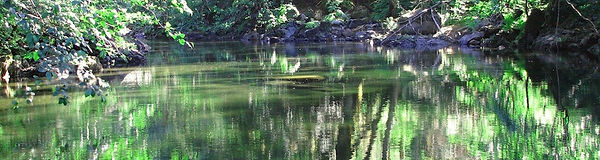 ENS-river-1200-1200x320.jpg