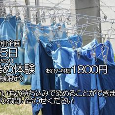 5月5日の特別イベント藍染DAY