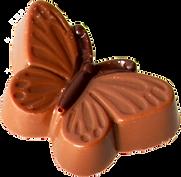 Schmetterling-2.png
