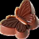 Schmetterling-1.png