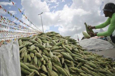 Pátio de milho do Ceasa de Pernambuco vai abrir 24h