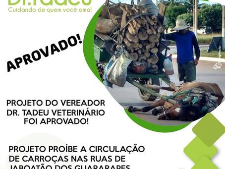 Projeto de lei proíbe circulação de carroças em Jaboatão