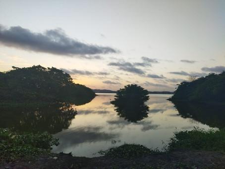 Corpo é encontrado carbonizado às margens de lagoa em Jaboatão