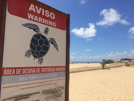 Construção de acesso na faixa de areia em Barra de Jangada divide opinião