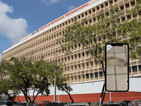 Deputado denuncia rato morto no refeitório do Hospital da Restauração