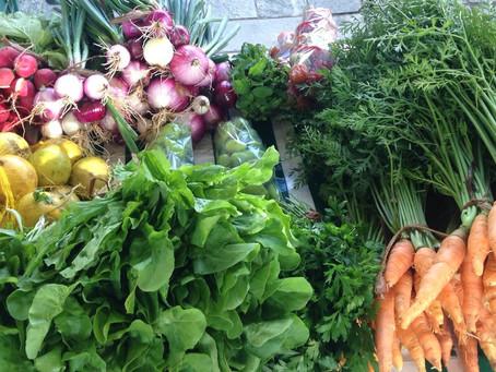 Feira expõe produtos orgânicos no Sesc Piedade
