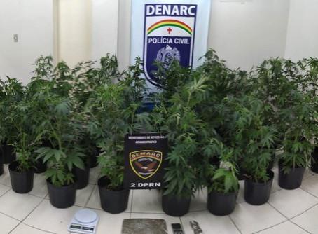 Polícia desmonta 'laboratório' de drogas em Jaboatão