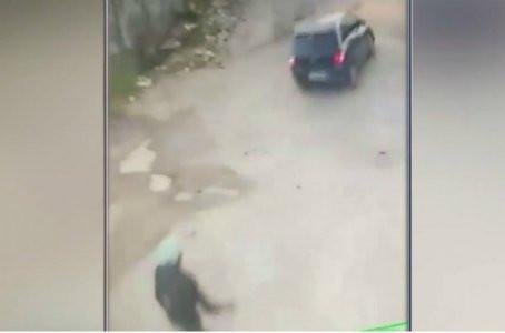 Vídeo mostra motorista atropelando cadela em Prazeres