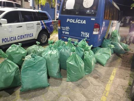 Polícia apreende cerca de 300kg de maconha em Aldeia