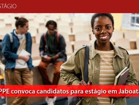 MPPE convoca candidatos para estágio em Jaboatão