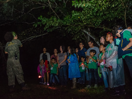 Zoo Noturno no Parque de Dois Irmãos anima a noite da sexta