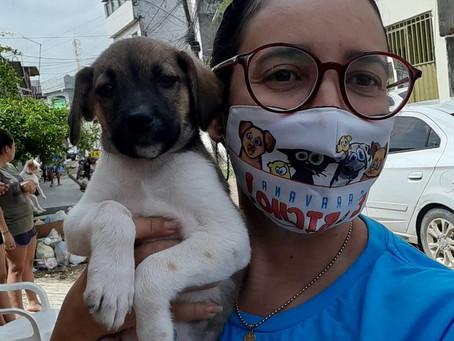 Protetores e simpatizantes da Causa Animal manifestam apoio à  pré-candidatura de Claucione Lemos