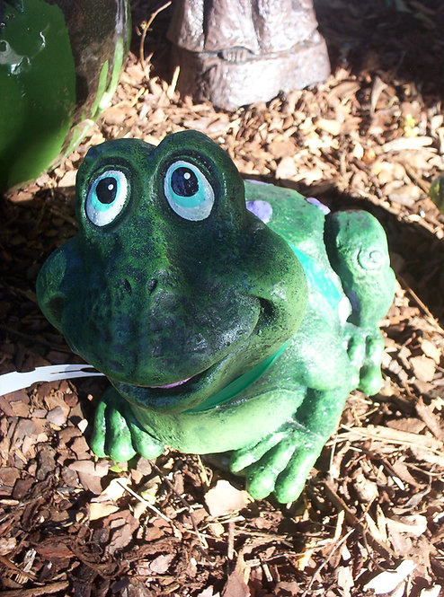 JOLLY FROG *