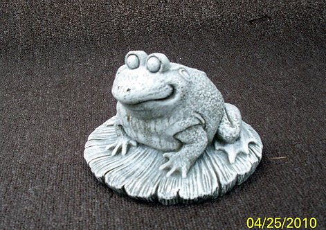 FROG ON LILY PAD- SILLY