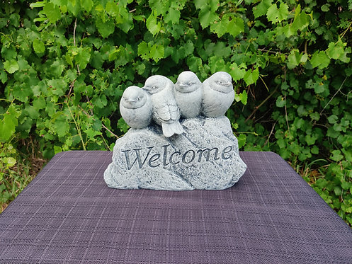 BIRDS ON WELCOME ROCK