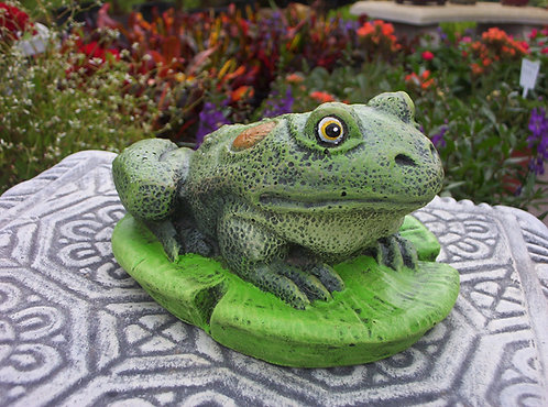 FROG ON LILY PAD-REALISTIC