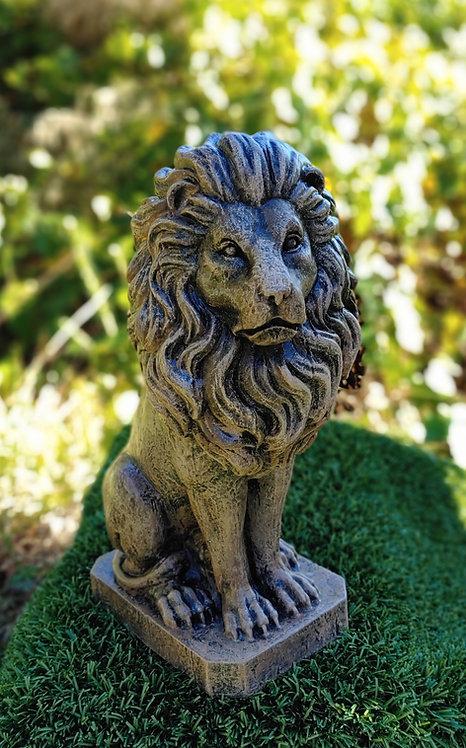SMALL LION *