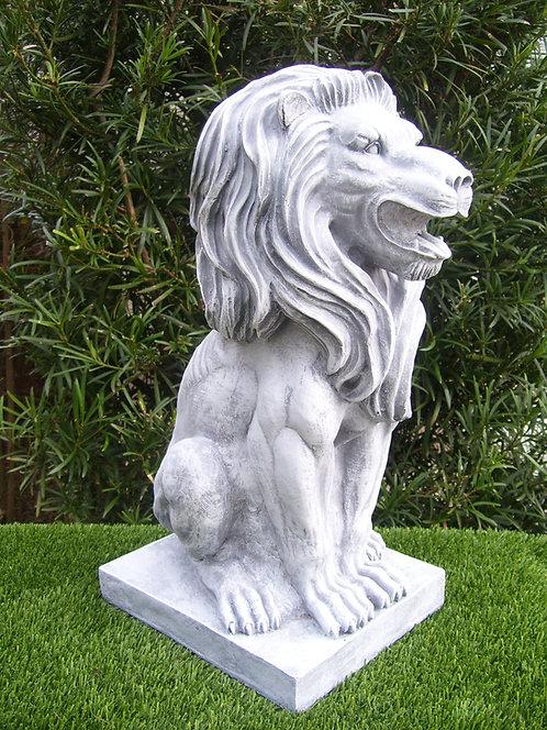 ROARING LION JR