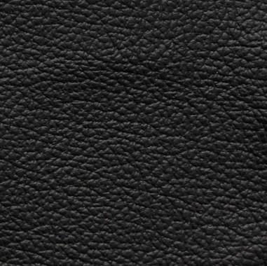 Standard-Black.jpg