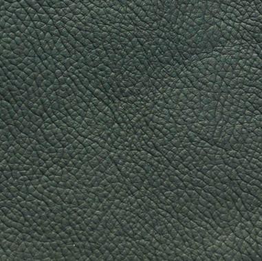 Standard-Green.jpg