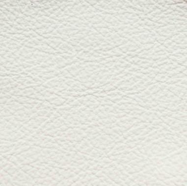 Standard-White.jpg