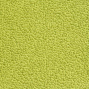 Glove-Lime.jpg