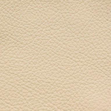Standard-Ivory.jpg