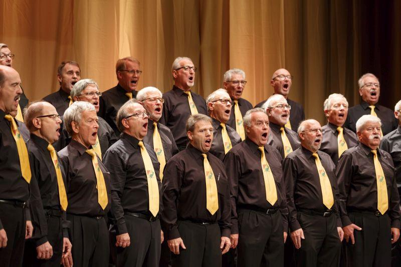 Singspiel Sängerherzen 2017 - Konzert